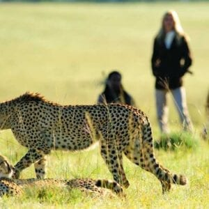 Eastern Cape Game Reserves